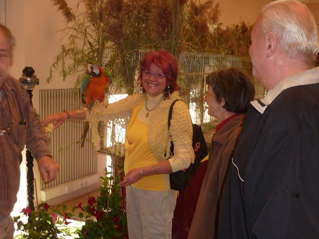 Madár kiállításon jártak a Wojtyla Ház nyugdíjasai