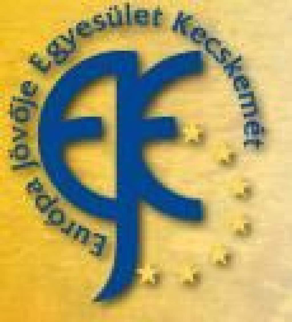 Farkas Gábor, az Európa Jövője Egyesület alapítója