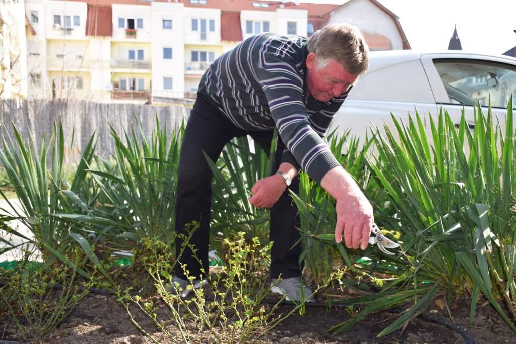 Pénteki napirend: kertészkedés a népkonyha körül