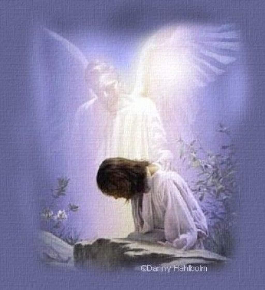"""Napi evangélium """"Heródes, a negyedes fejedelem mindenről értesült, amit Jézus tett és hirdetett."""""""